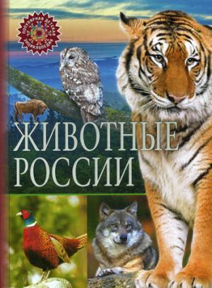 Животные России. (Популярная детская энциклопедия).