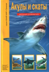 Акулы и скаты. Школьный путеводитель