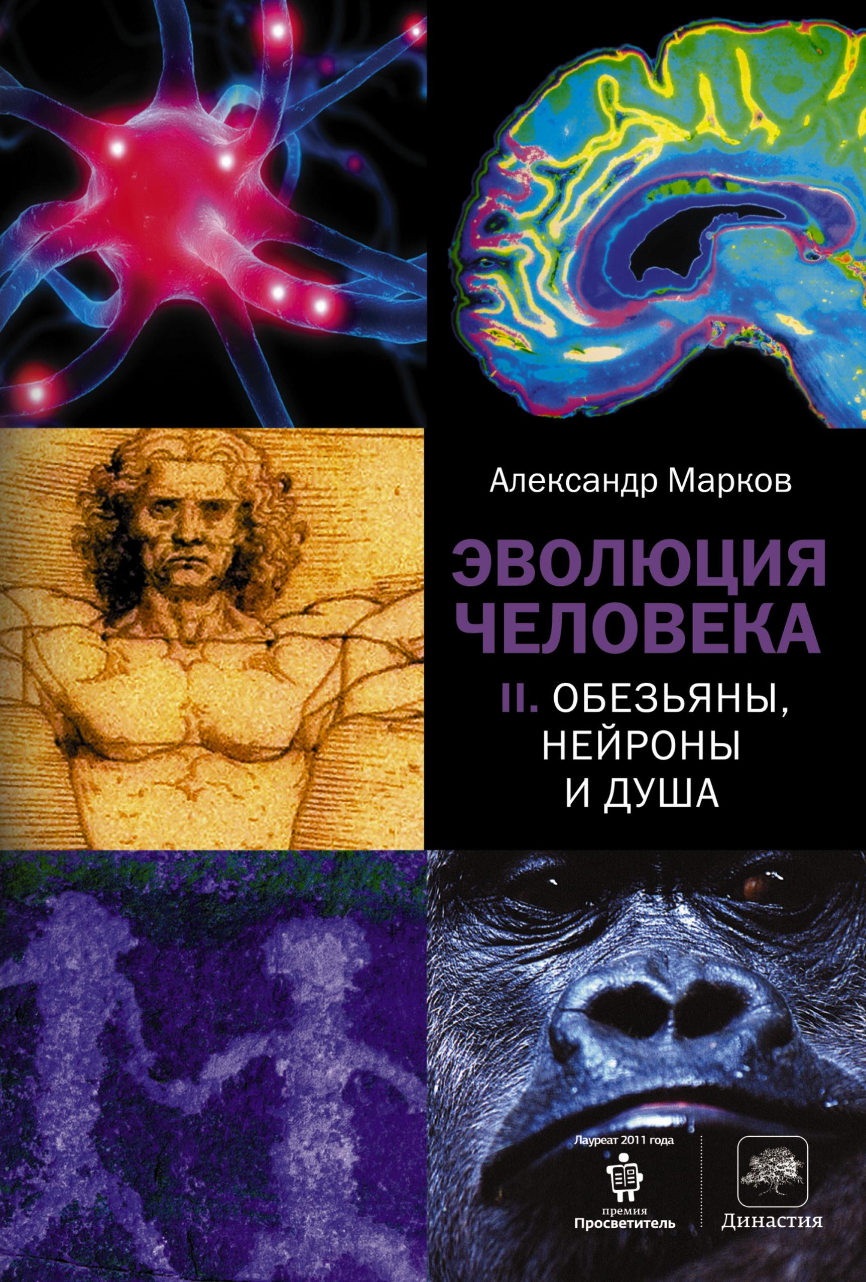 Эволюция человека. [В 2 кн.] Кн. 2. Обезьяны, нейроны и душа