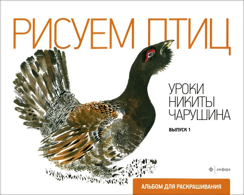 Рисуем птиц.Уроки Никиты Чарушина