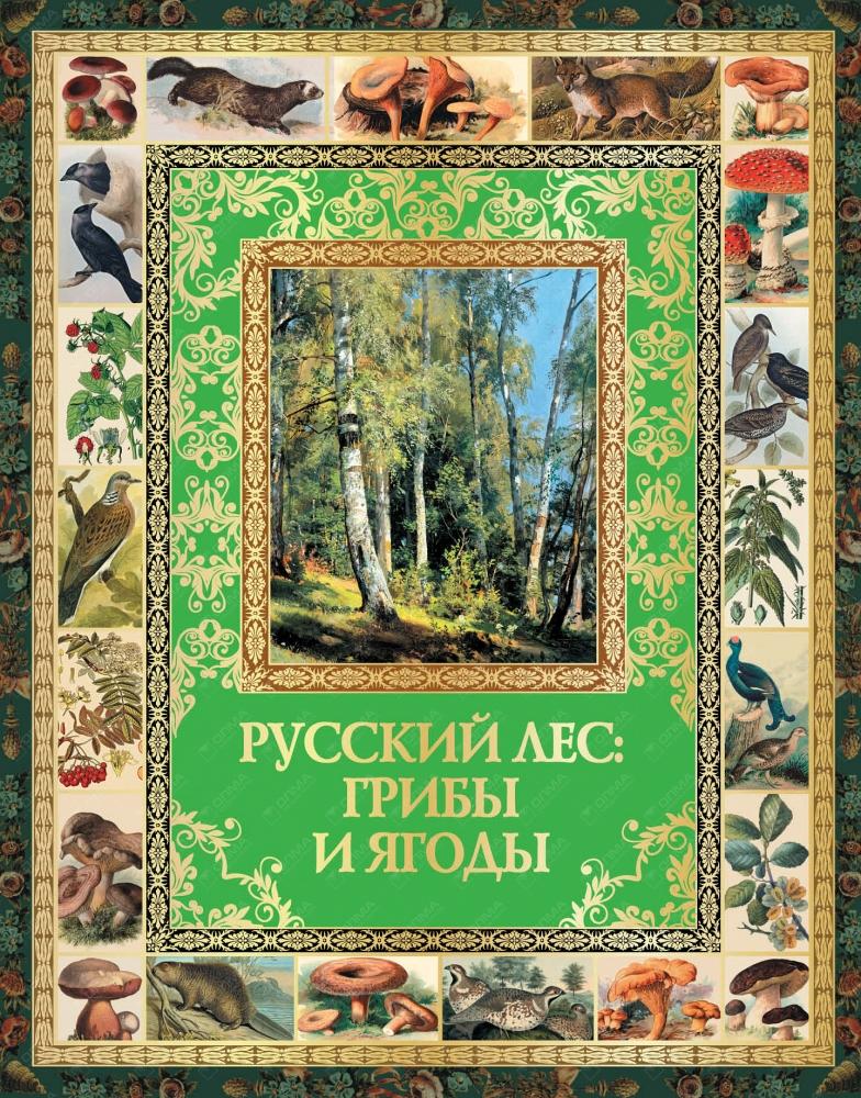 Бутромеев. Русский лес: грибы и ягоды.